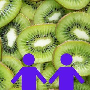 Thuisfruit Medium